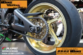 Others Gale Speed ZX-10R 電單車